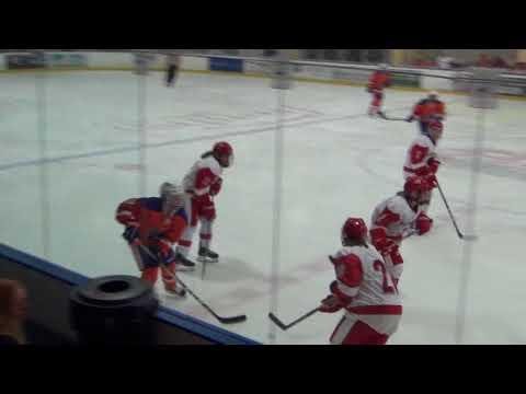 Sacred Heart (8) Vs Post (2) Women's Hockey 2017-11-03 Second Period