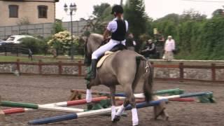 «Вятка Московии - 2013»- Региональная выставка лошадей в ЧКСК  «Лаир»  24