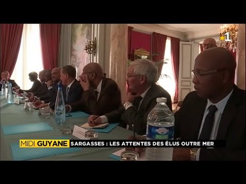 #sargasses:les attentes des élus d'Outre Mer.