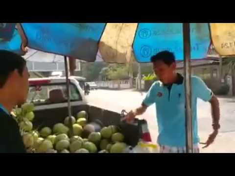 ติดอ่างมาซื้อมะพร้าว
