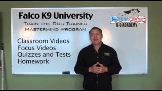 Train The Dog Trainer Mastermind Program - Falco K9