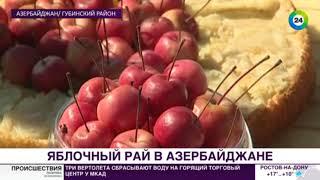 видео Праздник промышленного садоводства