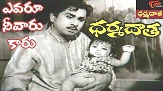 Dharma Daata Songs | Yevaroo Neevaru Kaaru Video Song | ANR, Kanchana | #DharmaDaata