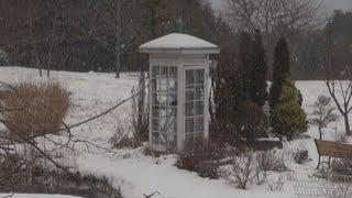 東日本大震災で大きな被害を受けた岩手県大槌町で、民家の庭に置かれた...