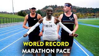 Running the Kipchoge Challenge (World Record Marathon Pace with Zach Levet!)