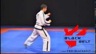 DO-SAN TUL by Jaroslaw Suska - www.tkd-blackbelt.com