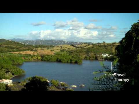 Top 10 Reasons to Visit Martinique Now! Travel Therapy With Karen Schaler