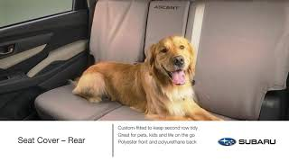 homepage tile video photo for Genuine Subaru Pet-friendly Accessory Highlights