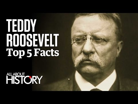 Teddy Roosevelt | Top 5 Facts