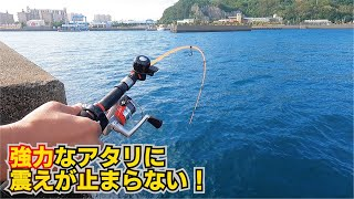 大物が住み着く堤防の階段下を狙い竿が折れかける生物を目の前に震えが止まらない!