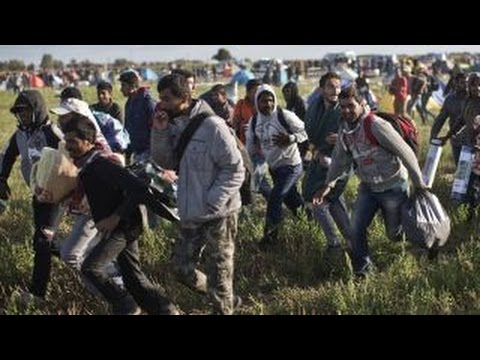 How Muslim immigration has roiled Europe