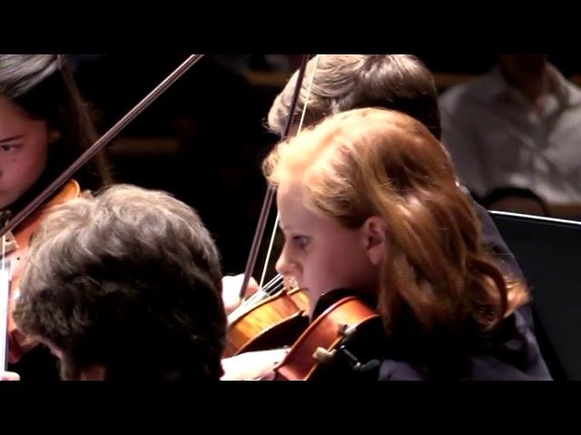 03 Davis High Chamber Orchestra Libertango Piazzolla