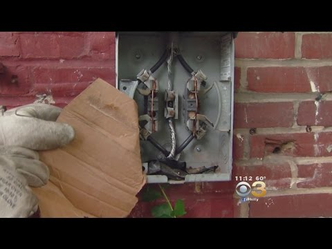 PECO Combats People Using Everyday Items To Steal Power