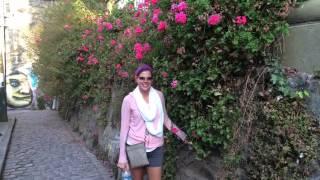 Travel blog. Volume 2. SANTIAGO/VALPARAISO, CHILE