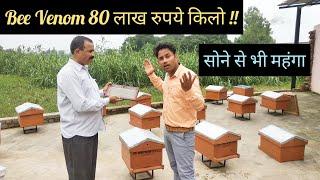 Bee Venom 80 लाख रुपये किलो || सोने से भी महंगा है यह || Hello Kisaan