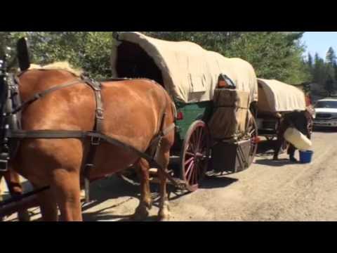 Chuck wagon cowboy 3