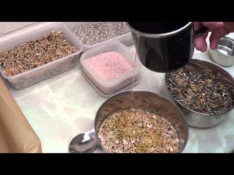 How To Make Bird Seed Treats