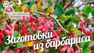 видео Способы заготовки плодов и ягод на зиму » Садоводу, дачнику, огороднику.