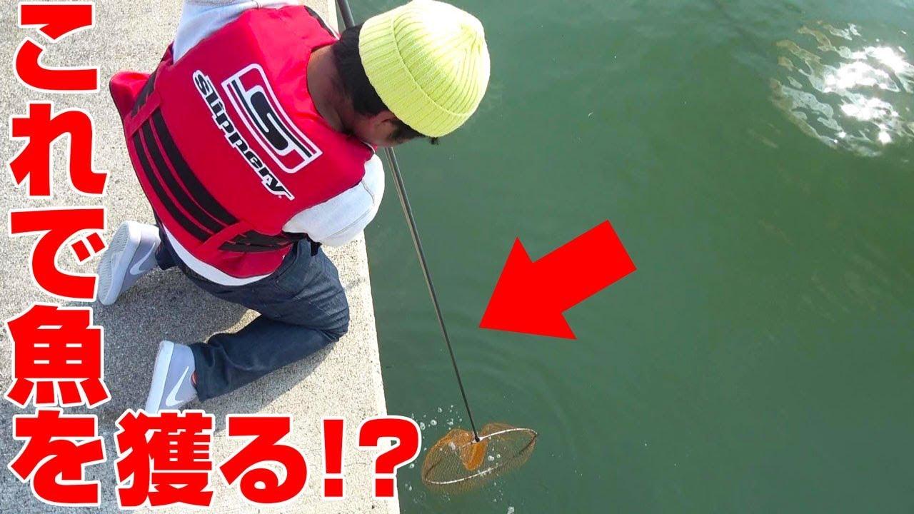 いろは いっち 釣り