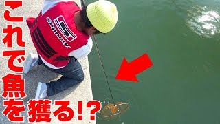 いっちゴンちゃん!網で高級魚を掬え! thumbnail