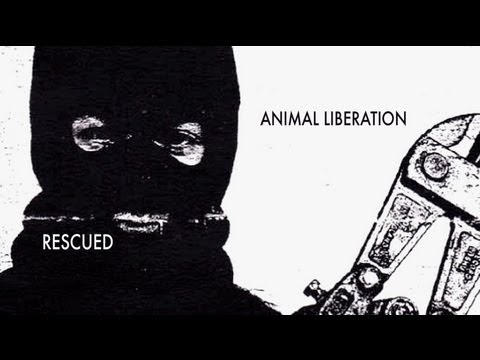 RESCUED: Animal Liberation (featuring Jonathan Paul)
