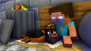 Monster School: BABY HEROBRINE WAS HOMELESS - Minecraft Animation