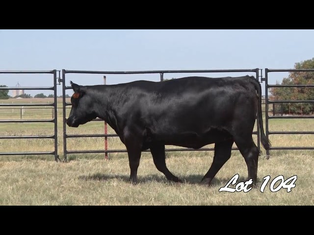 Pollard Farms Lot 104