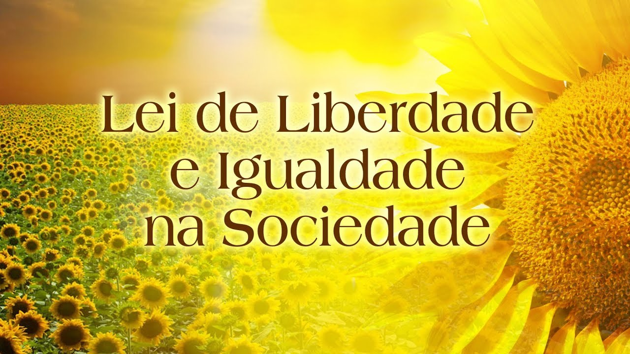 Lei de Liberdade e Igualdade na Sociedade