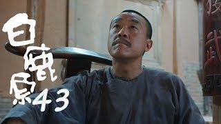 白鹿原 | White Deer 43【DVD版】(張嘉譯、秦海璐、何冰等主演)