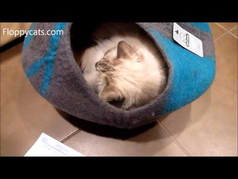 luxury-cat-cave-bed-catgeeks-comfycat-cave-unboxing-arrival-review-video---ねこ---ラグドール---floppycats