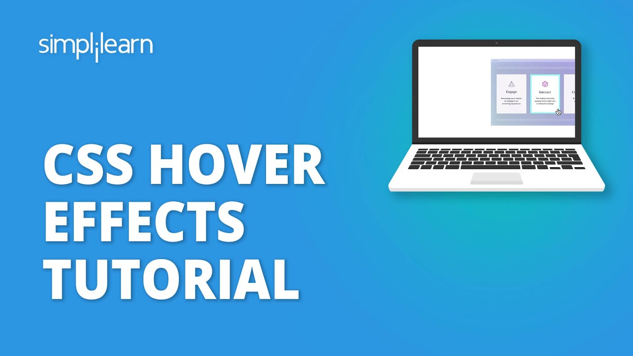 CSS Hover Effects Tutorial   Hover Effect In CSS   CSS Tutorial For Beginners