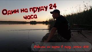 ВОТ ЭТО ПОКЛЁВКИ ловля карпа 24 часа один на пруду HD