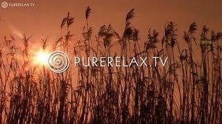 Nature Videos - Piano Music, Spiritual, Quiet Music, Positive Music - EVENING BLISS