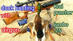 kral Puncher Jumbo  25 - This Gun is Amazing! Initial Tune 46 shots