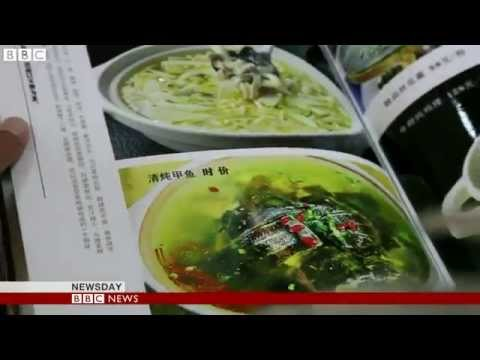 BBC News   BBC taken on China 'corruption tour' in Henan province