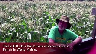 Spiller Farms: Portland, Maine