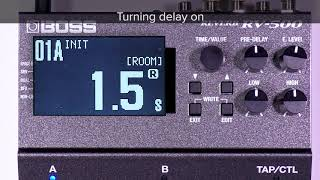 Tips for RV-500 (3): Using reverb and delay simultaneously