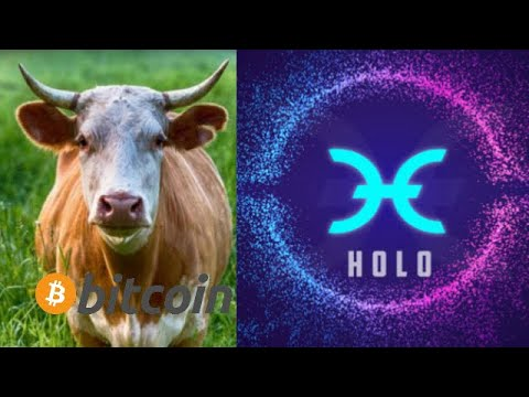 holochain-bullrun-potential-for-year-2020-hot-bitcoin-cryptocurrency-future