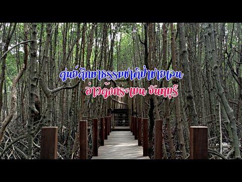 เที่ยวธรรมชาติ ณ ศูนย์ศึกษาธรรมชาติป่าชายเลน อ่าวคุ้งกระเบน จันทบุรี