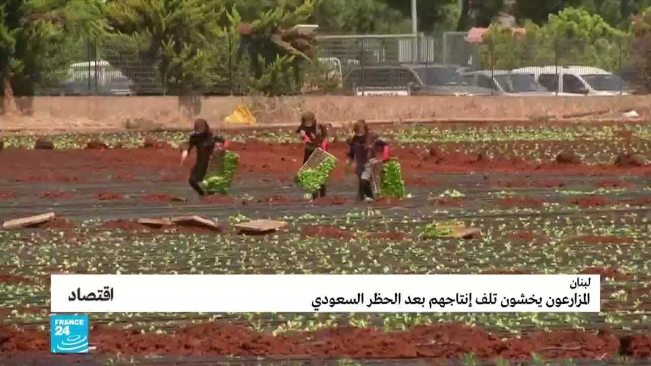 لبنان: المزارعون يخشون تلف إنتاجهم بعد الحظر السعودي  - 10:56-2021 / 5 / 14