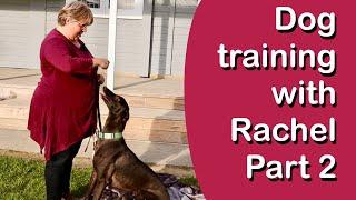 Advanced Dog Training with Greyhound Guru, Dog Behaviourist & Trainer Rachel
