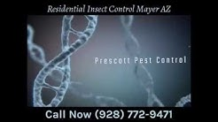 Residential Insect Control Mayer AZ