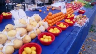 Pazarda domates, kuru soğan, patates ve diğer sebzelerin fiyatları