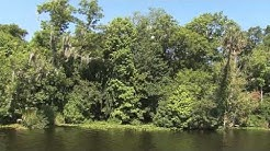 St. Johns River Tours