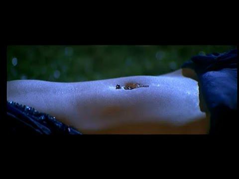 Saree  navel piercing hot rain song thumbnail
