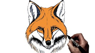 How To Draw a Fox | Step by Step