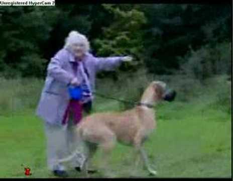 Granny Goes Flying