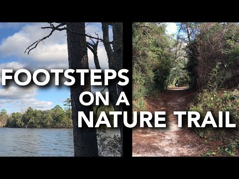 ASMR Footsteps - Walking a Nature Trail (3Dio Binaural, No Talking, First Person POV, Repetition)