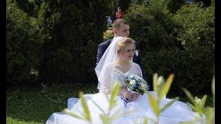 Свадьба - Андрей и Алина (Июнь 2017)