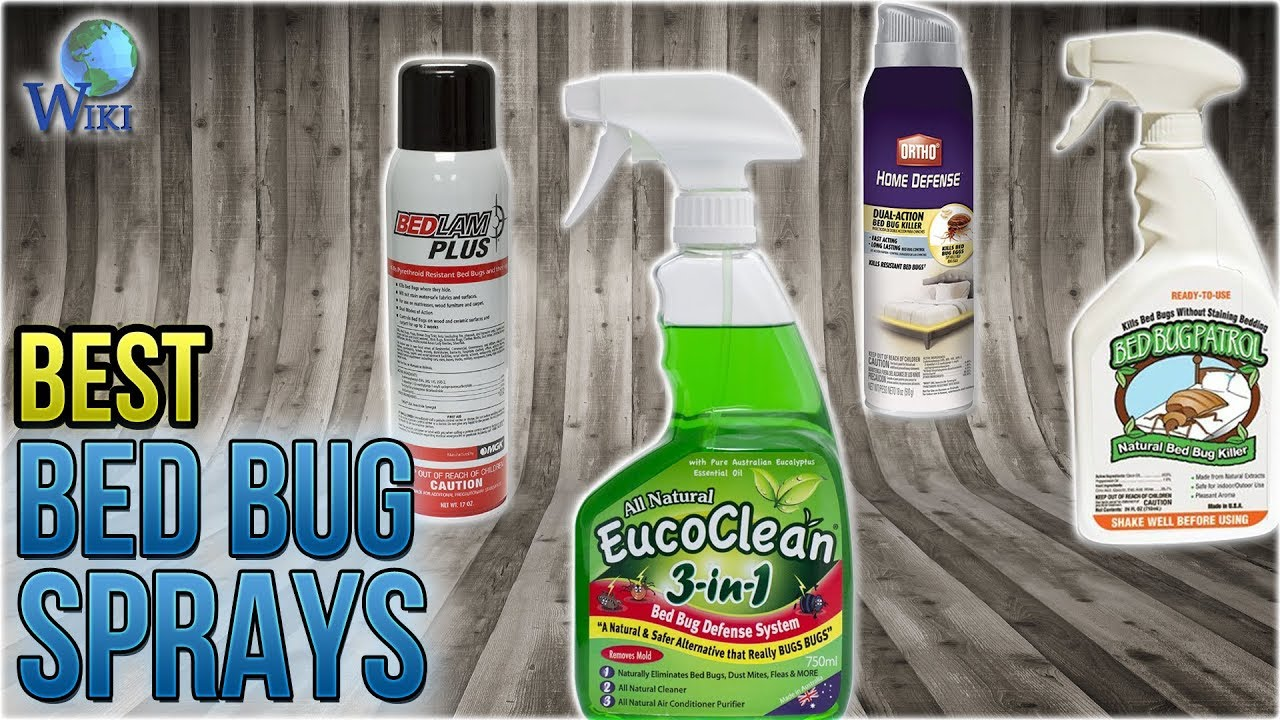 10 Best Bed Bug Sprays 2018 Youtube